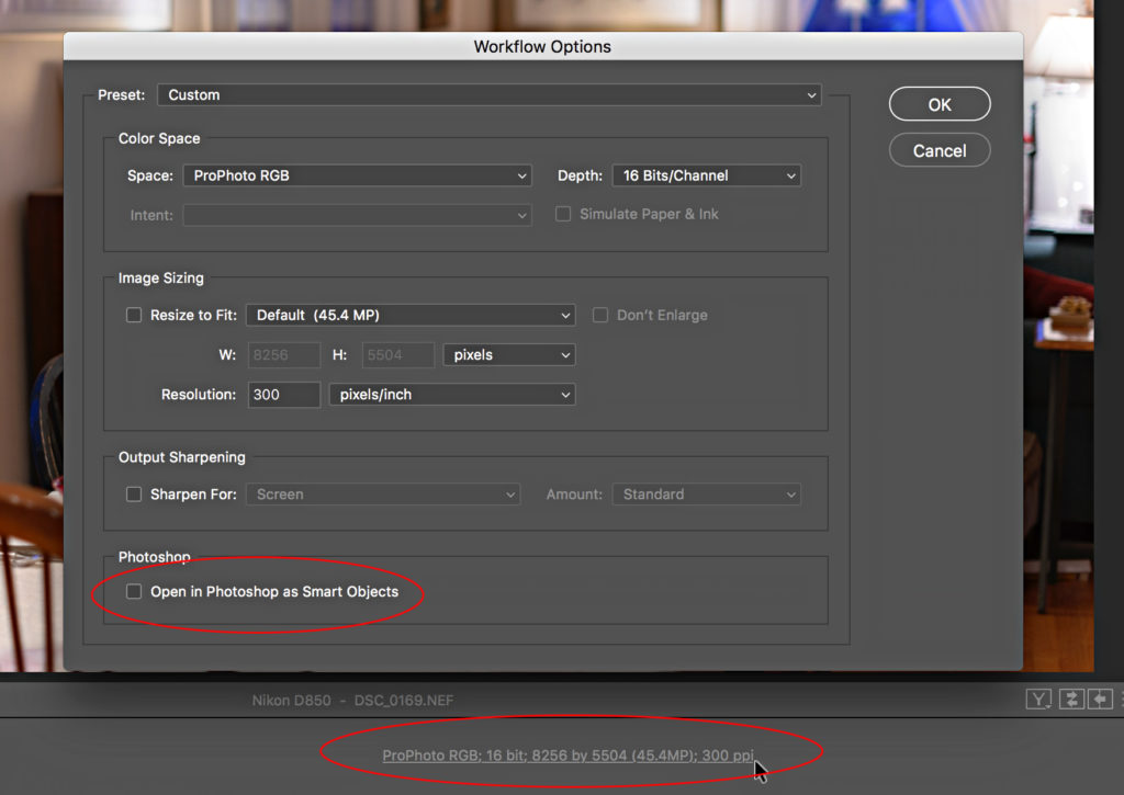 Adobe Camera Raw for Lightroom Classic Users - Lightroom